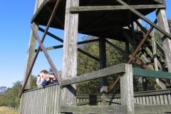 Fuglereservat - udkigstårn