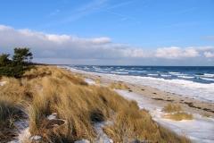 Den flotte sandstrand i februar