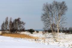 Diget i vintertøj - marts